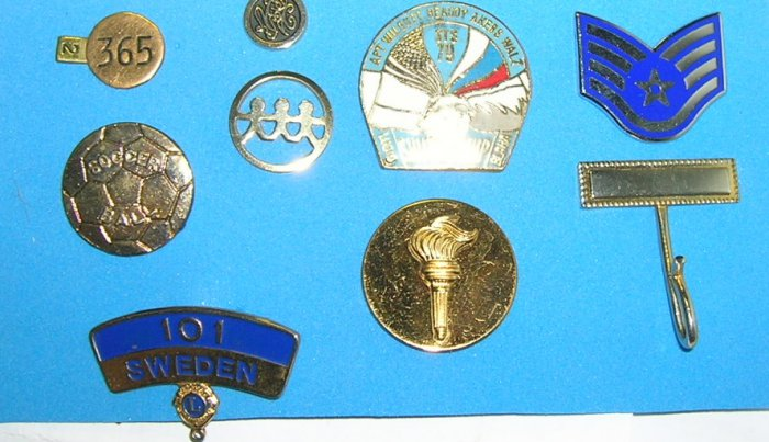 Lot of 9 Assorted Collectible Pins