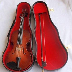 Another beautiful violine miniature