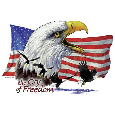 Cry of Freedom. Patriotic Eagle Tshirt/ T Shirt/ 3X long