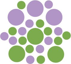 Set of 26 - LIME / LILAC CIRCLES Vinyl Wall Graphic Decals Stickers shapes polka dots