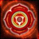 Root Chakra Tarot Reading