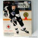 Bethesda Softworks Wayne Gretzky Hockey PC Game DOS Disk w Box