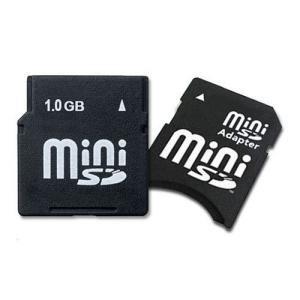 1GB Mini Secure Digital (miniSD) Memory Card