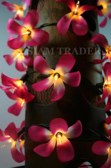 35 BULB PINK FLOWER PARTY / CHRISTMAS STRING LIGHT