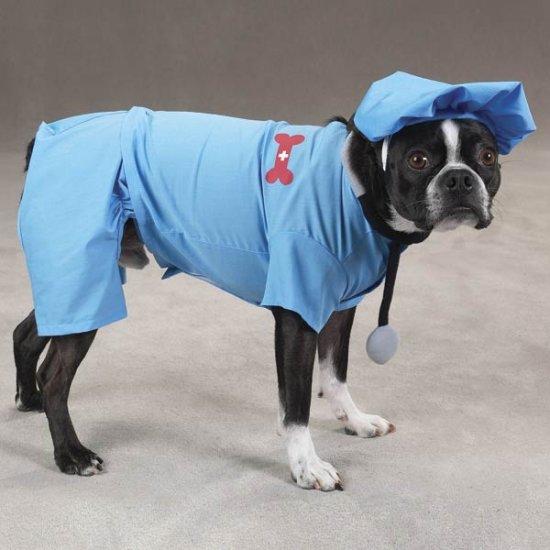 SMALL ER Doctor Dog Costume Hospital Style Pet Scrubs for Halloween
