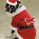 X-LARGE Santa Claus Pet Halloween Dog Costume Christmas