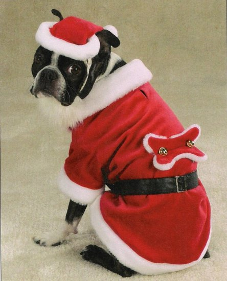 MEDIUM Santa Claus Pet Halloween Dog Costume Christmas
