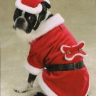 SMALL Santa Claus Pet Halloween Dog Costume Christmas