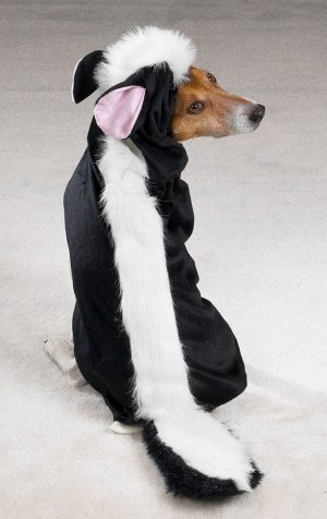 SMALL Little Stinker Pet Halloween Dog Costume Skunk