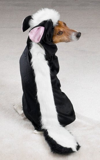 X-SMALL Little Stinker Pet Halloween Dog Costume Skunk