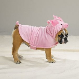 SMALL Piggy Pooch Pet Halloween Dog Costume Pig