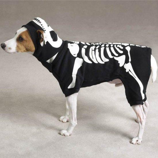 MEDIUM Glowing Boney Dog Halloween Costume Pet Bones Skeleton Spooky Glow in the Dark