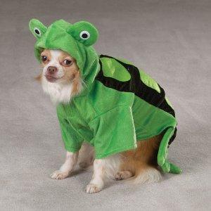X-LARGE Turtle Pet Halloween Dog Costume