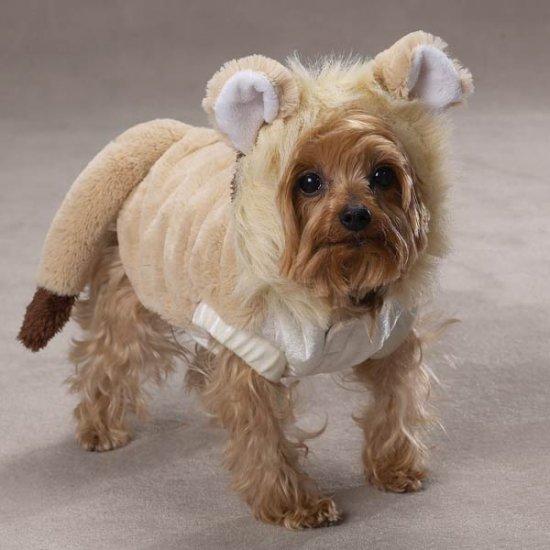 SMALL Lil' Lion Pet Halloween Dog Costume