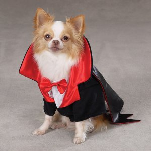 X-SMALL Dogicula Dracula Pet Halloween Dog Costume