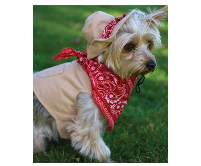 MEDIUM Shifty Sheriff Halloween Dog Costume