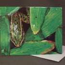 "4 Blank Greeting Cards Notecards- ""Finished Rendering of Greens""- Frog- Colored Pencil Artwork-"
