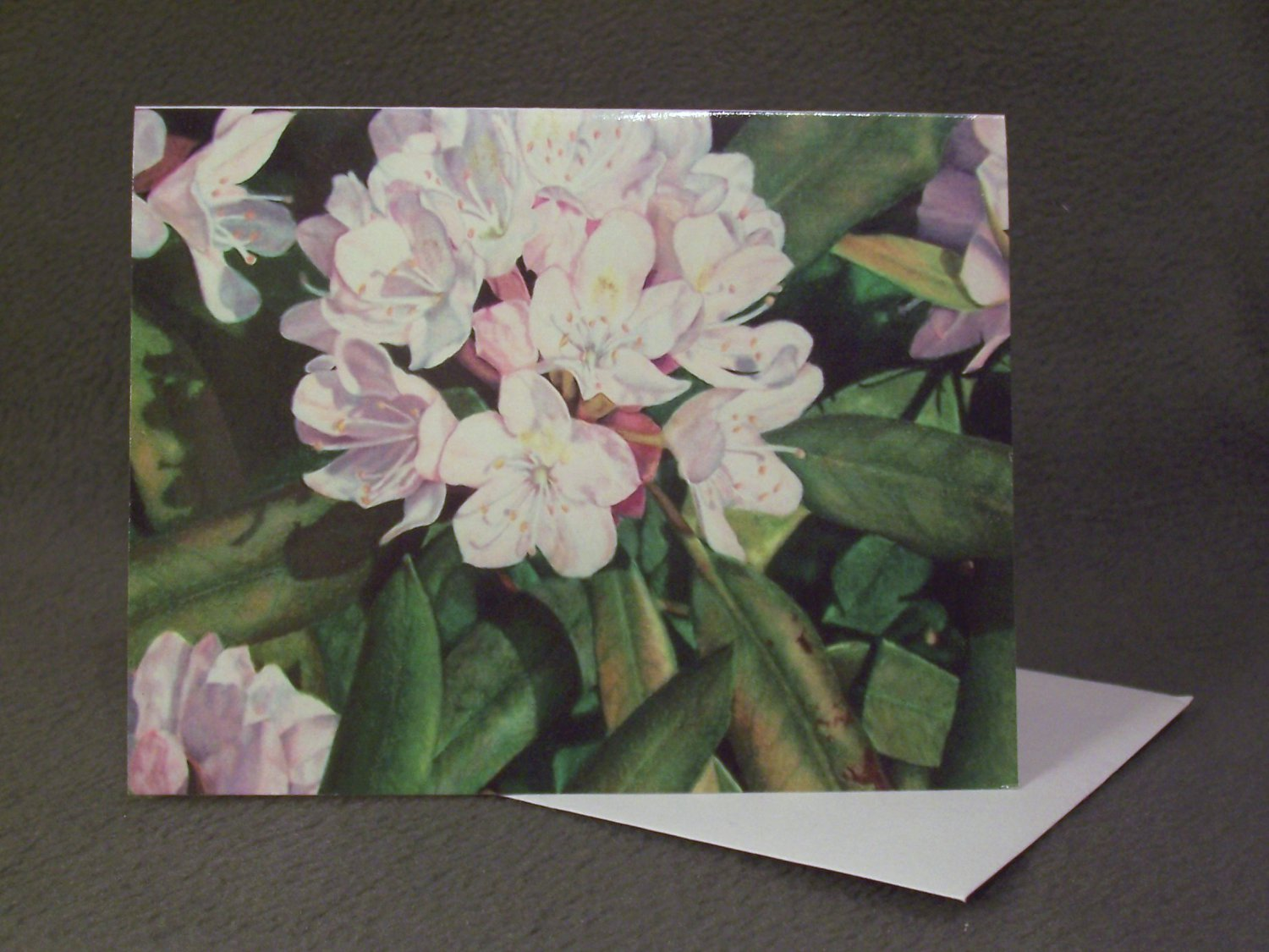 "4 Blank Greeting Cards Notecards- ""Rhododendron""- Colored Pencil Artwork"