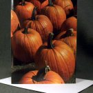 "4 Blank Greeting Cards Notecards- ""Pumpkins""- Photograph"