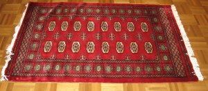 Bokhara Nice New Persian Area Rug Carpet Must see good price