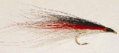 Red Sided Shiner bucktail