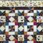 Pumpkins and Pinwheels Quilt Pattern Twin Size Quilting