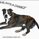 """Pitbull T-shirt  """"give pits a chance"""""""