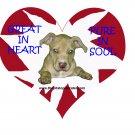 "Pitbull T-Shirt ""pure in heart"""