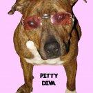 "Pitbull T-Shirt ""pitty diva"""
