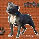 """pitbull t-shirt     """"PITBULL"""