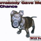 "pitbull t-shirt  ""Somebody Gave Me A Chance"""