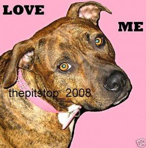 "Brand New Pitbull T-Shirt  ""Love Me"""