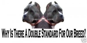 """Brand New Pitbull T-Shirt  """"Why Is There A Doublel"""""""