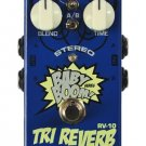Free Shipping Biyang Babyboom RV-10—Stereo Reverb Guitar Effect Pedal