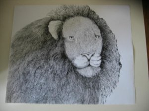 Lion Pen & Ink Original Drawing
