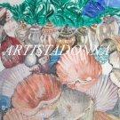 Seashell Desktop Wallpaper