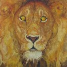 The Lion and The Mouse by Jerry Pinkney Folklore Juvenile Literature Book Hardcover 2009