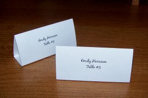 100 Personalized Wedding Tent Style Place Cards Style #1