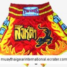 TS127 - Twins Special Muay Thai Shorts