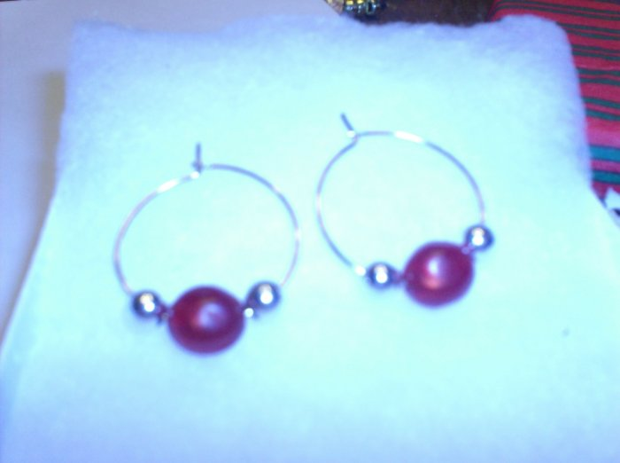 Earring- Silver with red Stones