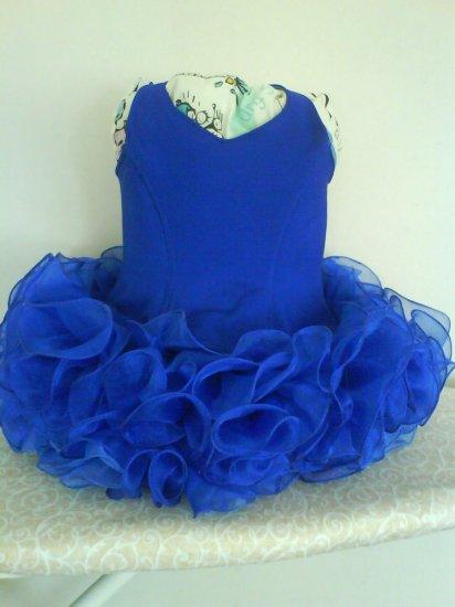 Custom Made National Pageant Dress