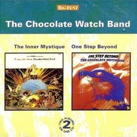 Chocolate Watch Band - The Inner Mystique / One Step Beyond Free Shipping
