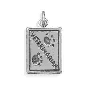 Sterling Silver Veterinarian Charm