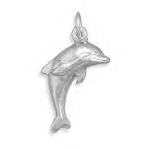 Silver Dolphin Charm