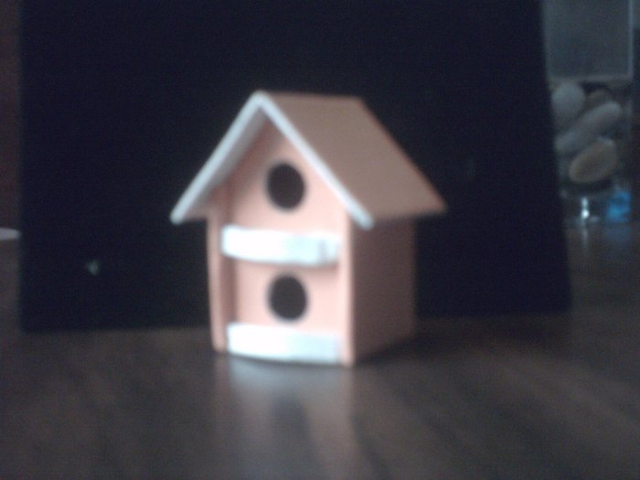 Peach Bird House.