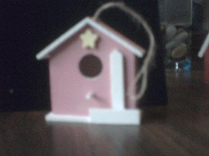 Pink Bird House.