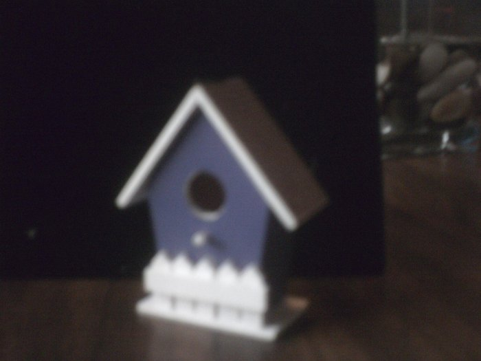 Purple Bird House.
