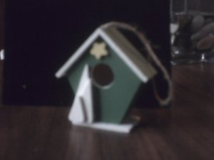 Green Bird House.