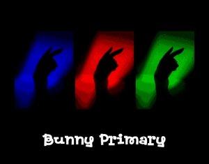 Bunny Art Poster
