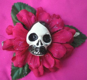 pancho fuschia flower